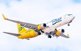 Bees Airline - нова українська авіакомпанія
